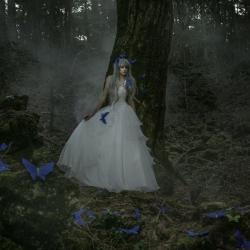 angel-haseo-hasegawa