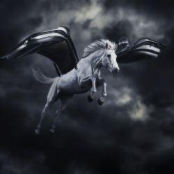 mercedes_amg_car_ad_campaign_horse_door_wings__115233