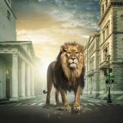 jumanji-lion-john-fulton