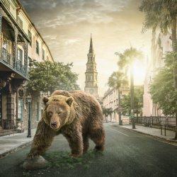 jumanji-bear-john-fulton