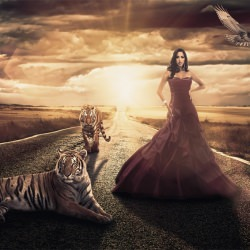 woman_queen_of_the_tigers__115034