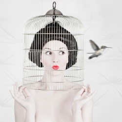 fashion_portrait_beauty_cage_bird__128927
