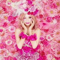 pink-haseo-hasegawa