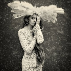 snow-bird-michele-taras
