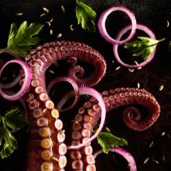octopus-salad-sue-atkinson