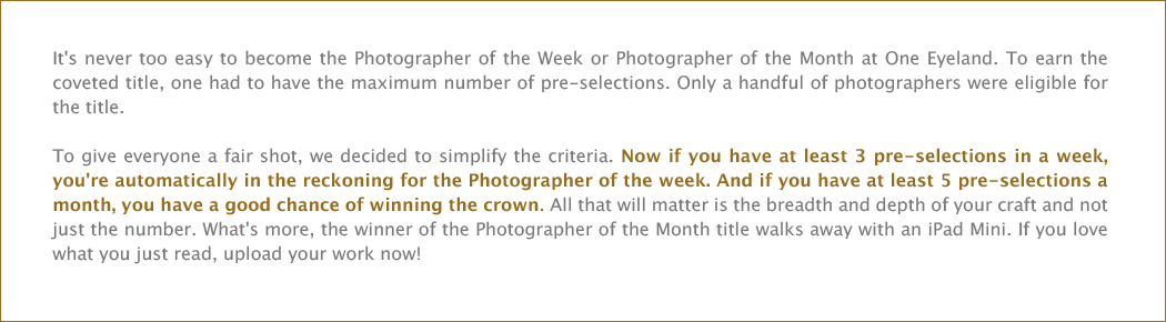 Photographer of the week / month