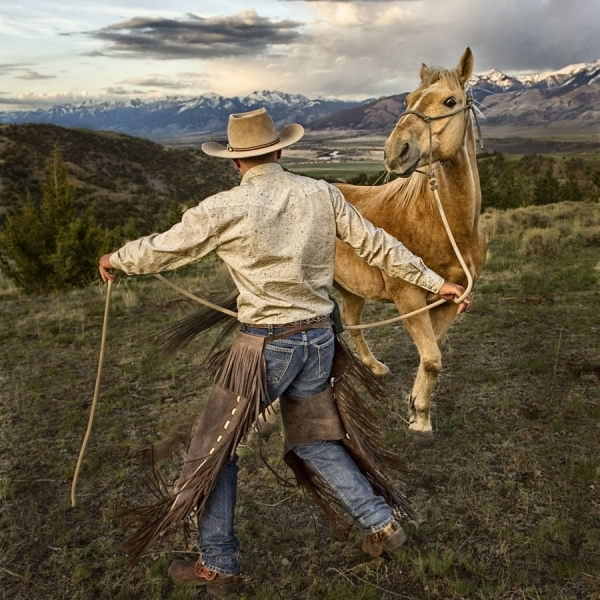 Cowboy Rope Horse by Jim