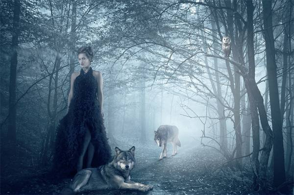 Photograph Jackson Carvalho Queen Of Wolves on One Eyeland
