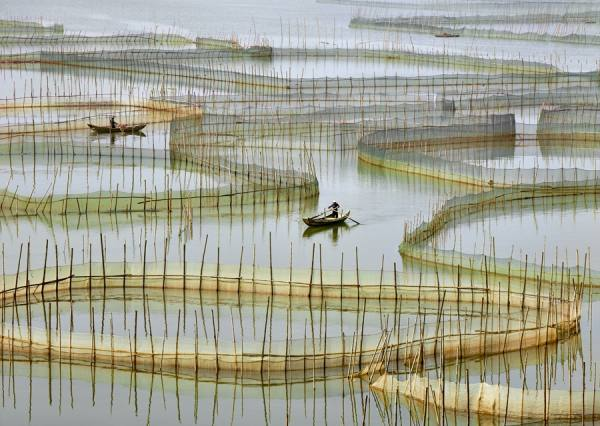 Photograph Thierry Bornier Labyrinth Of Nets on One Eyeland