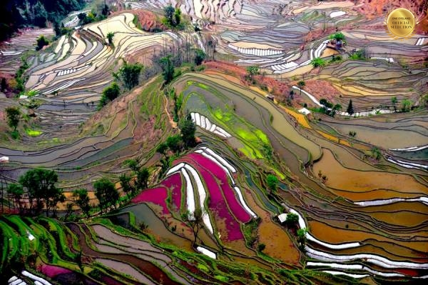 Photograph Thierry Bornier Yuanyang   China on One Eyeland