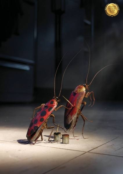 Photograph Philip Rostron No Pest Can Hide Cockroach on One Eyeland