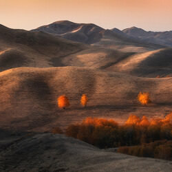 autumn-hills-tatiana-biriukova