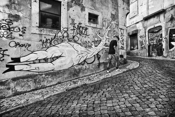 Photograph Carlos Lopes Franco Wt on One Eyeland