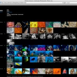 Nicholas Samaras Underwater Photography-Nicholas Samaras-Finalist-WEBSITE-Website-25