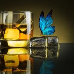 Beverages-Jackson Carvalho-finalist-ADVERTISING-Product / Still Life-676