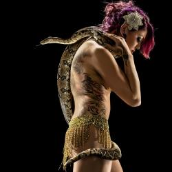Golden Gate Dolls-RJ Muna-finalist-ADVERTISING-Other -1322
