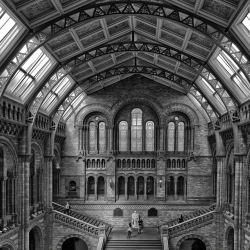 Natural History Museum-Vicente Moraga-finalist-ARCHITECTURE-Interiors -1347