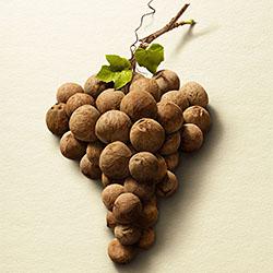 Grape Nuts-David Stinson-silver-ADVERTISING-Product / Still Life-2350