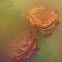 Vintage Flowers-Jonathan Knowles-bronze-NATURE-Flowers -1776