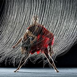 Robert Moses' Kin-Rj Muna-finalist-ADVERTISING-Other -2175