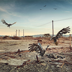 Scavengers-Andy Glass-gold-ADVERTISING-Self-Promotion -3054