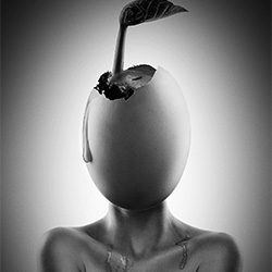 Fertility-Jackson Carvalho-finalist-ADVERTISING-Self-Promotion -2698