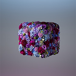 Geometric Flowers-Jonathan Knowles-finalist-ADVERTISING-Product / Still Life-2785