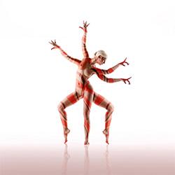 anatomy-Kristian Liebrand-bronze-FINE ART-Nudes -2535