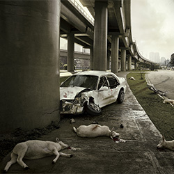 Don't drink and drive-Marcus Hausser-finalist-ADVERTISING-Public Service-3004