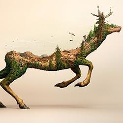 robinwood-Surachai Puthikulangkura-gold-CGI ARTIST-CGI ARTIST -3066