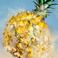 Dole-Jonathan Knowles-bronze-ADVERTISING-Food -3143