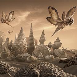 The Shell Kingdom-Carl Warner-silver-ADVERTISING-Conceptual -3842