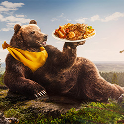 ABC - Hungry Like A Bear-Onni Wiljami Kinnunen-finalist-ADVERTISING-Conceptual -3578