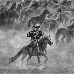 Horsewinner-GOH WEE SENG-finalist-EDITORIAL-Travel-3761