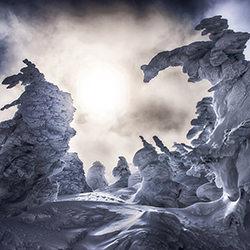 Ice Monsters-Kazuaki Koseki-bronze-NATURE-Seasons -4002