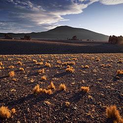Monjes de la Pacana-Stephan Romer-Finalist-FINE ART-Landscape -4255