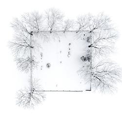 Cemetery-Tomas Neuwirth-silver-ARCHITECTURE-Aerial-4600