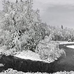 CRYSTALLINE GRACE-Ian Ely-finalist-NATURE-Seasons -4453