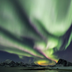 Auroras Nest-Adrian Popan-bronze-NATURE-Sky-4643
