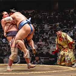 Sumo Wrestling 4-Chin Leong Teo-Bronze-SPORT-Andere-5276
