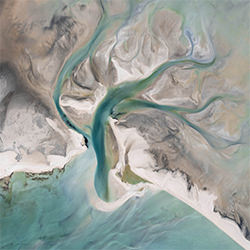 Gezeitenbaum-Kevin Krautgartner-Silber-NATUR-Antenne -5707