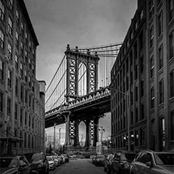 Manhattan Bridge-Marc Barthelemy-finalist-ARCHITECTURE-Bridges -5486