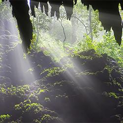 Sanctuary-Craig Bill-Bronze-SPECIAL-Panorama -5188