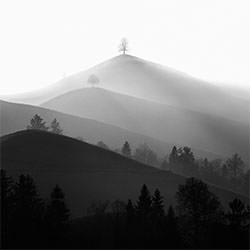 Aspiring-Rene Schaedler-bronze-FINE ART-Landscape -5286
