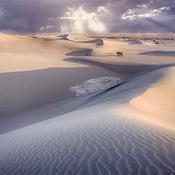 Mesquite Dunes-Derek McCoy-Bronze-NATUR-Landschaften -5363