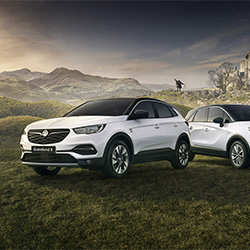 Vauxhall Every Star Needs Its Extras Press Campaign-Nigel Harniman-finalist-ADVERTISING-Automotive -5606