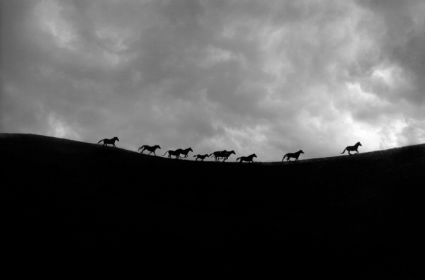Photograph Tony Stromberg Hilltop on One Eyeland