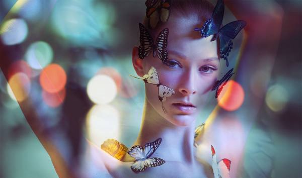 Photograph Billy Kan Butterfly Of Love on One Eyeland