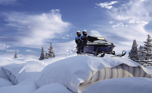 Photograph Glen Wexler Ski Doo Pillows on One Eyeland