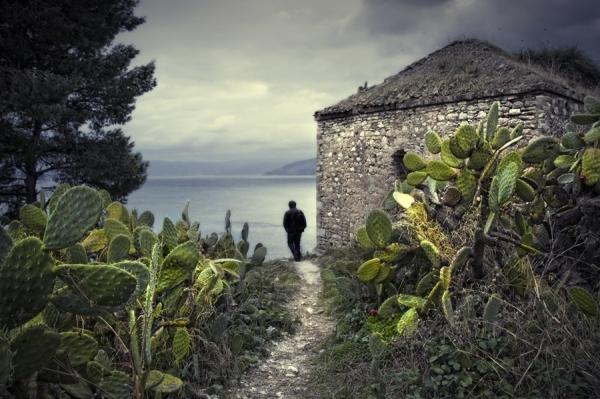 Photograph Eugenia Kyriakopoulou Cactus on One Eyeland